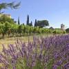 Provence: Welche Reisezeit ist günstig?