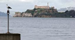 Alcatraz – Keine Urlaubsinsel
